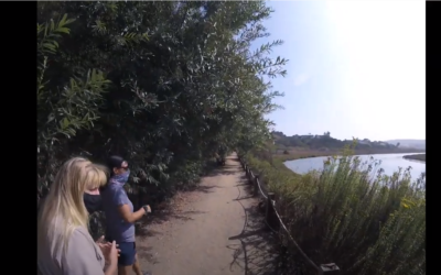 Virtual Hike at San Elijo Lagoon Ecological Reserve and Nature Center